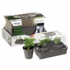 22cm Kitchen Garden Propagator set